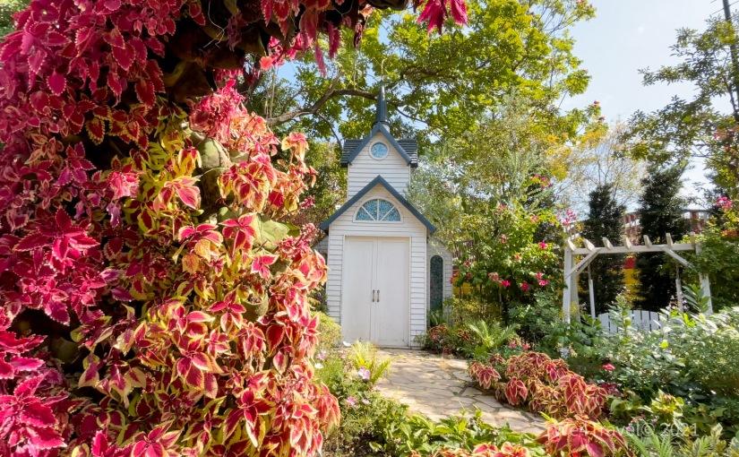 隱藏於荔枝角公園的神秘小角落|童話世界與「嶺南之風」中式庭園