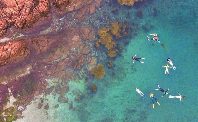 今個夏天嘅浮潛好去處!綠蛋島以外的選擇…
